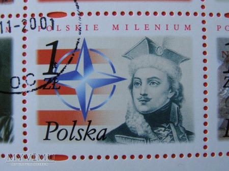 Polskie Millenium