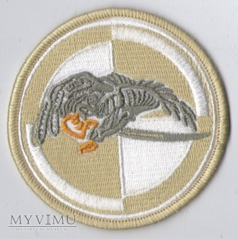 Emblemat pustynny 25 Dywizja Kawalerii Powietrznej