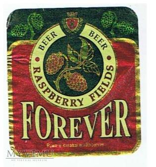 forever piwo o smaku malinowym