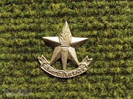 Indian Army: Army Education Corps
