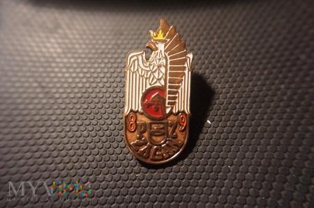 89 Pułk Zmechanizowany Żagań