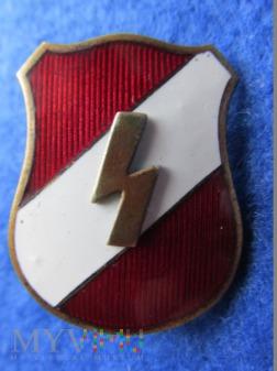 Deutdsche Jungvolk-odznaka organizacyjna