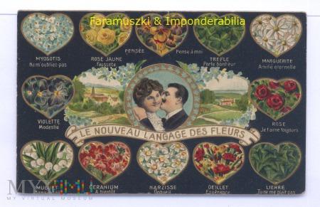 Duże zdjęcie Le nouveau langage des fleurs