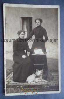 Kobiety pies stolik stare zdjęcie