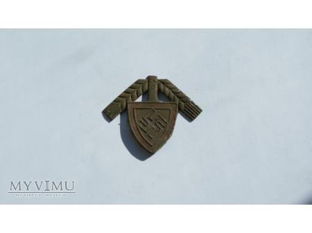 Znaczek z czapki wojsk RAD - owskich