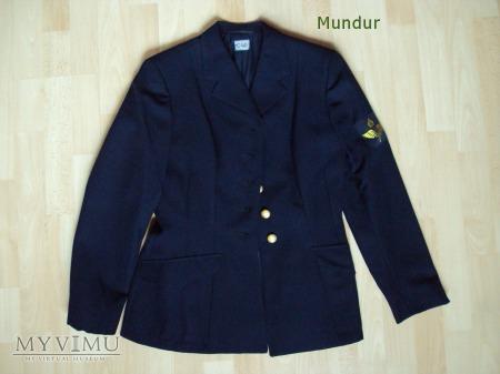 Flygvapnet uniform m/66