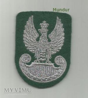 Orzełek wz.93 Wojsk Lądowych (haft maszynowy)