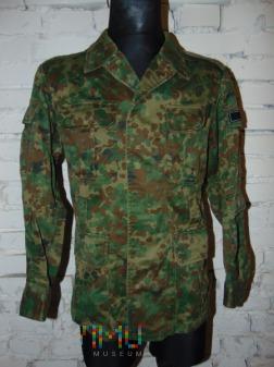 Bluza gepard łąka wz.4639; UOP ABW