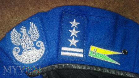 Pułkownik 8 pułk przeciwlotniczy 12 DZ