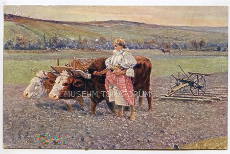 Wiosna - 1915
