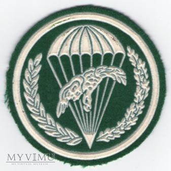 Oznaka 10 batalion desantowo-szturmowy