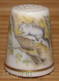 (3) ROYAL WORCESTER-polatuch