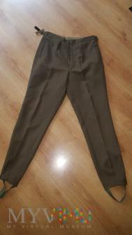 Spodnie munduru wyjściowego szeregowego WL wz.5494