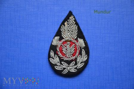 Emblemat haftowany OSP