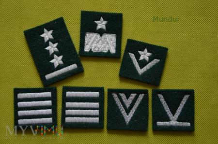Dystynkcje na beret zielony - haft komputerowy