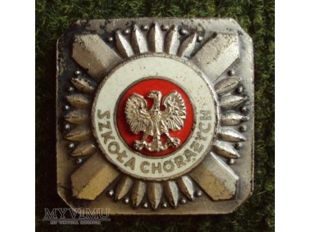 Odznaka absolwenta szkoły chorążych