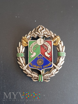 Odznaka 1 Pułku Kawalerii Legii Cudoziemskiej
