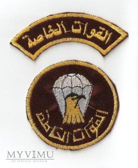 Naszywka ogólna Sił Specjalnych i wojsk PD