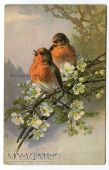 1931 Catharina C. Klein kwiaty Flowers ptaszki
