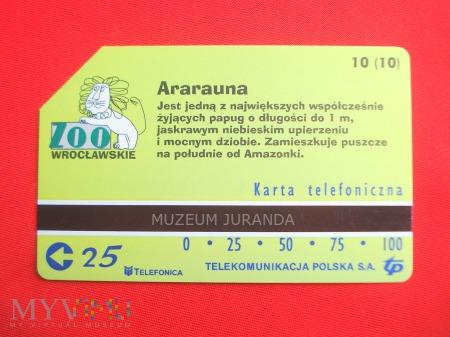 Karta magnetyczna 1050