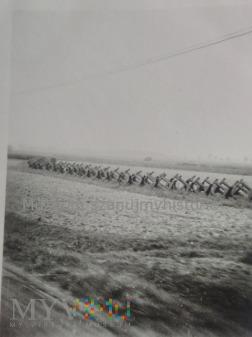 zapory przeciwczołgowe 1939