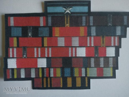 baretki kombatantów