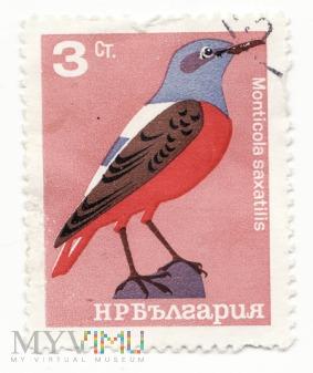 Znaczek pocztowy -Zwierzęta 29
