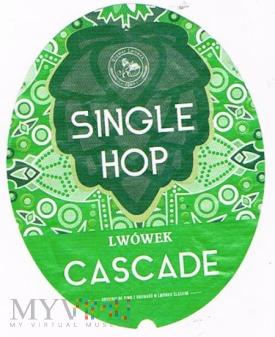 Duże zdjęcie single hop cascade