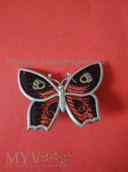 WHW Schmetterlinge 2