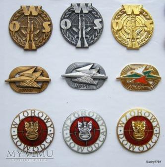 Odznaki wojskowe