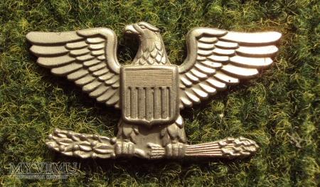 US Army: oznaka stopnia - pułkownik