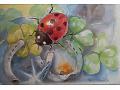 Zobacz kolekcję Malowane ustami stopą - kartka pocztowa