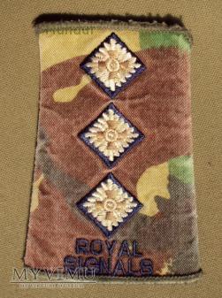 Oznaka stopnia: kapitan Royal Signals