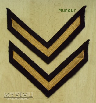 Dystynkcje do munduru wyjściowego MW - bosman
