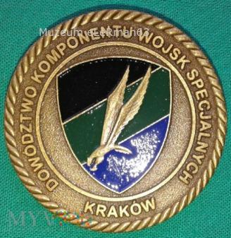 Coin. Z-ca d-cy Płk Pietras DKWS.