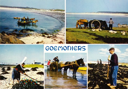 GOEMONIERS