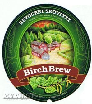 birch brew