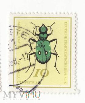 Znaczek pocztowy -Zwierzęta 31