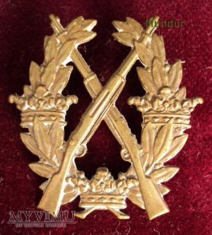 Skyttemärket för de frivilliga skytteföreningarna