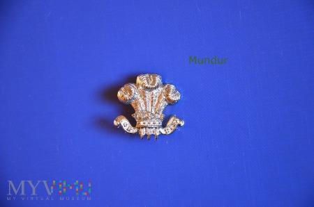 Brytyjska korpusówka Leinster Regiment
