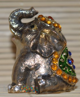 Naparstek siedzący słoń