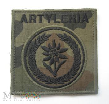 Artyleria, 21. BSP