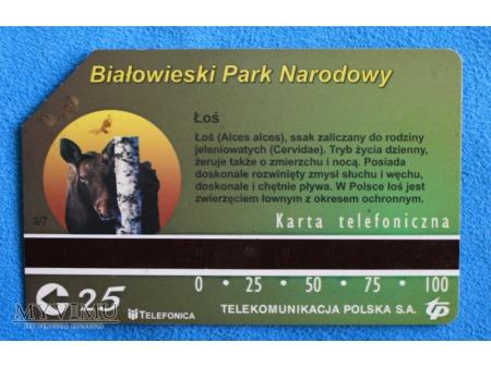 Białowieski Park Narodowy 3 (7)