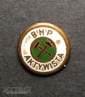 AKTYWISTA BHP