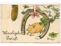 Świnka Bożonarodzeniowa - 1948