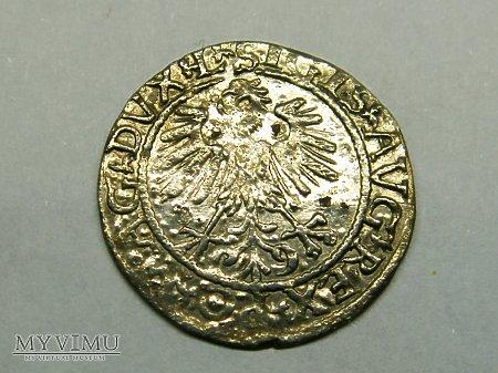 Półgrosz Litewski 1561