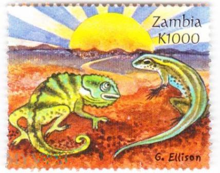 Zambia K1000