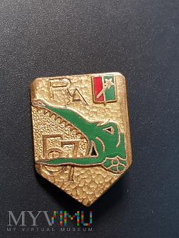 Pamiątkowa odznaka 57 Pułku Artylerii - Francja