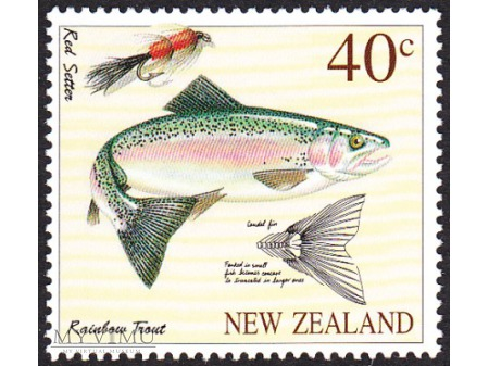Nowa Zelandia 1997