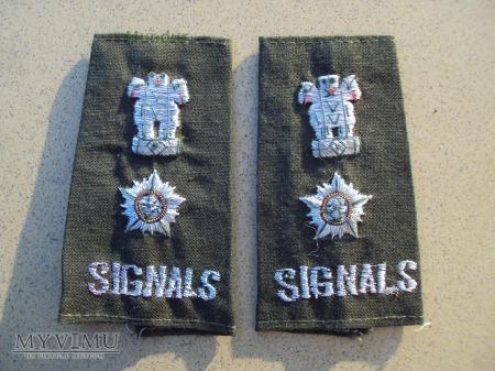 Indyjskie dystynkcje: podpułkownik SIGNALS